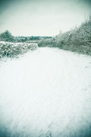 100106_snow_003-2
