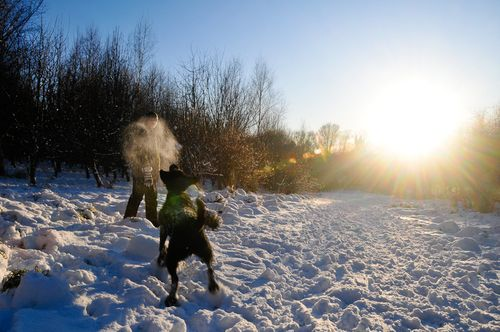 100107_snow_007