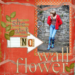 Nowallflower_2